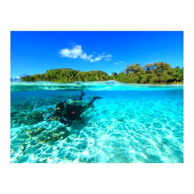 ダイビングの資格がなくても大丈夫!シュノーケリングで体験できる世界のサンゴ礁
