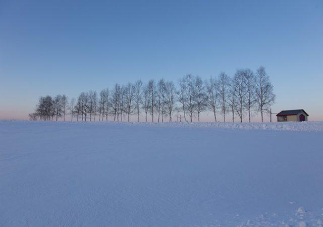 寒くても魅力的!北海道の秋冬オススメ観光スポット4選(北海道・東北)
