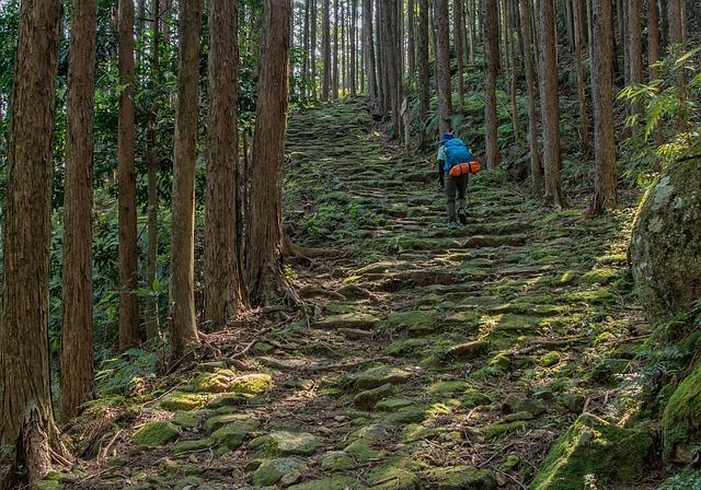 熊野古道と一緒に巡ろう!熊野古道のおすすめ観光スポット3選