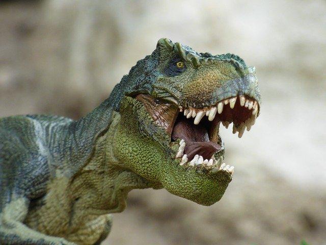 福井県立恐竜博物館と周辺のおすすめ観光スポット3選
