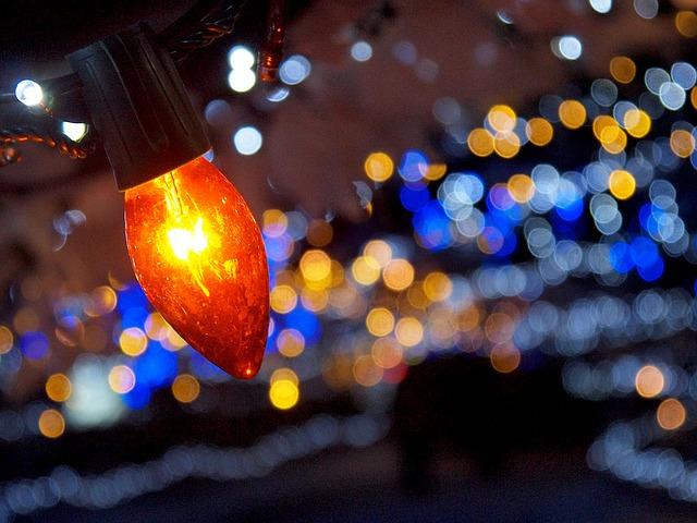 冬だけの楽しみが盛りだくさん!冬におすすめの埼玉の観光スポット4選