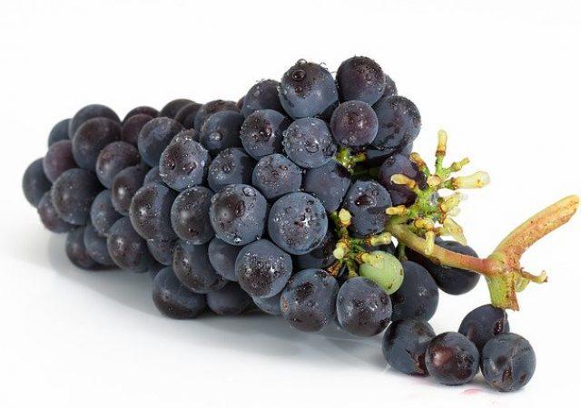 みずみずしい採れたてフルーツ!山梨県産フルーツが味わえるおすすめカフェ3選!