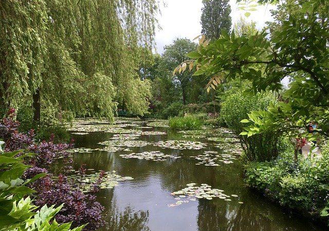高知県にフランスの庭園が!北川村のモネの庭の魅力とは?